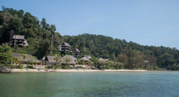 Остров Борнео - поймать обезьяну за хвост!