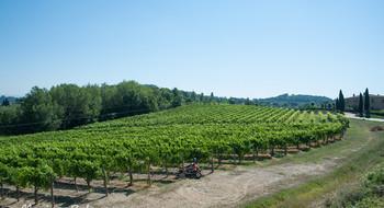 Тоскана винная - солнечная и гостепреимная