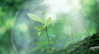 Organic shop - магазины экологически чистых продуктов